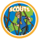 scouts RGB website